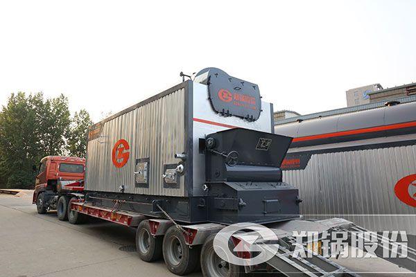烘干木材6吨和10吨生物质蒸汽锅炉价格
