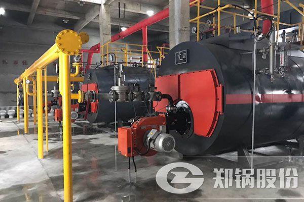 WNS10-1.25-Y.Q和WNS6-1.25-Y.Q燃气锅炉